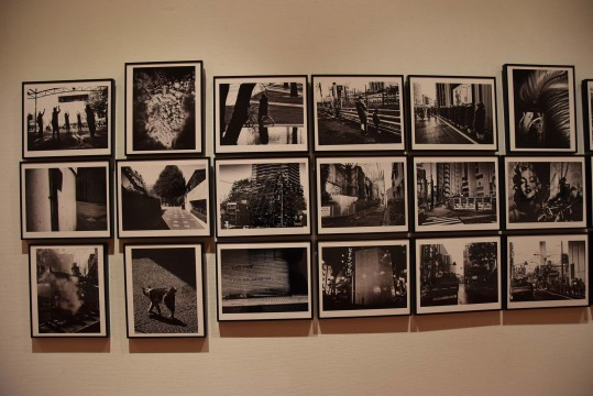 Exhibition of works by Daido Moriyama (Atelier West)