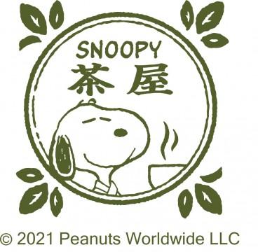 © 2021 Peanuts Worldwide LLC