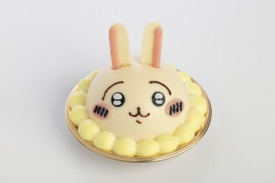 Cake (rabbit)