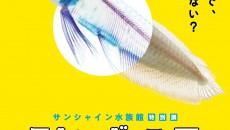 ©川崎悟司 SBクリエイティブ 新世界『透明標本』冨田伊織