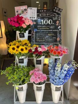 """Flower Tsumi"" development image"